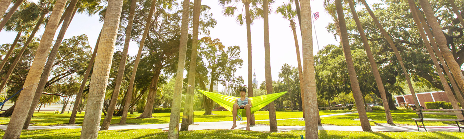 Student in a hammock in Plant Park under palm trees