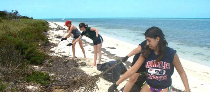 Students cleaning up a beach