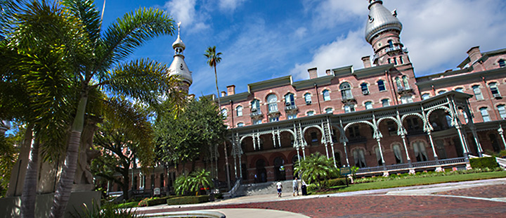 The University of Tampa Picture