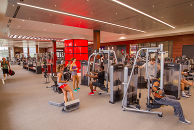 Fitness assessment rooms, group fitness, <br/> classrooms, Precor fitness machines and free <br/> weights will be available.