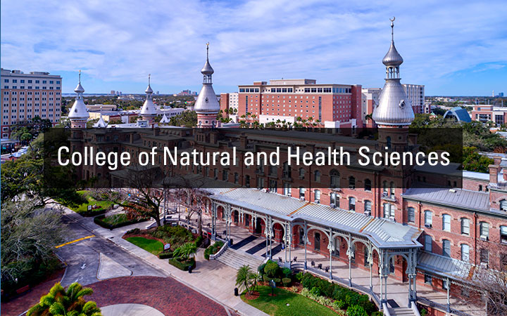 College of Natural and Health Sciences