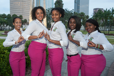 UT FSL recognizes seven of the Divine Nine (NPHC) organizations.