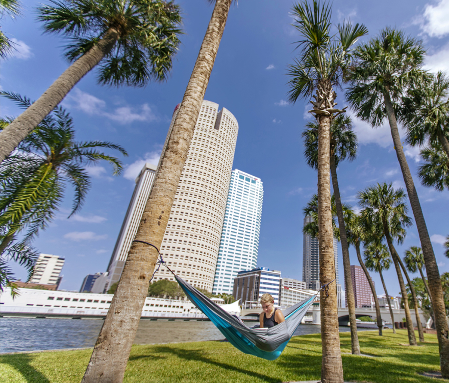 Hammock in downtown Tampa campus